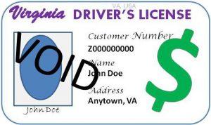 DMV Drivers License